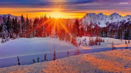 Fire sunset on the snowy forest wallpaper #6987 1198