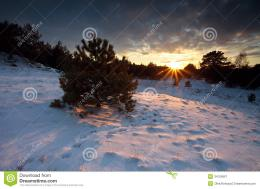 Sunbeams At Sunset Over Forest In Snow Royalty Free Stock Photography 1061