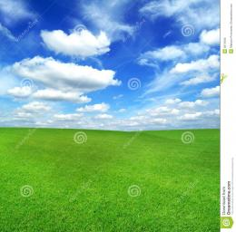 Green Field And Blue Sky Stock ImagesImage: 6511844 926