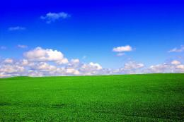 Green field blue sky Green field blue sky – ipadwallpapershop com 1553