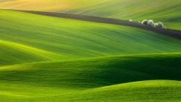 Spectacular Green FieldHigh Definition WallpapersHD wallpapers 578