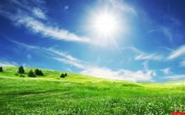 Green Field Nature HD Wallpaper | E Entertainment 1715