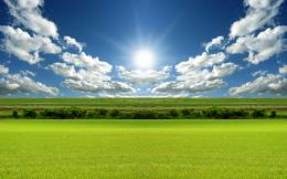 Green field under blue sky wallpapers and imageswallpapers 1913