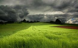 Green field with thunderclouds HD Desktop Wallpaper | HD Desktop 750