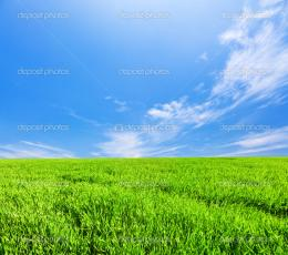 Green field with flowers under blue cloudy sky — Stock Photo 1570