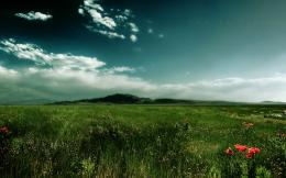 Green field wallpapers and imageswallpapers, pictures, photos 1687