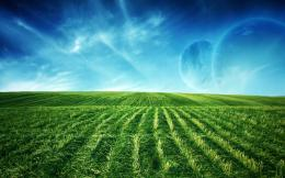 Green field wallpaper92135 1505