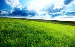 Green field wallpapers and imageswallpapers, pictures, photos 1577