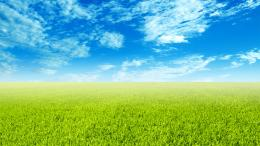 Green field wallpaper #7391 1373