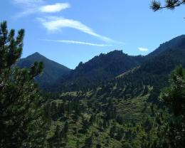 File:Green mountains JPG 867