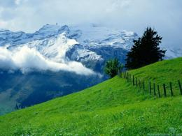 Green Mountains Wallpapers HD 1473