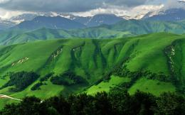 Grass Green Mountains & Trees wallpapers | Grass Green Mountains 1000