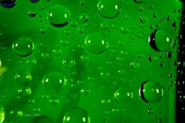 Green Water drops macro #JMphotography | Photography by Jorge Medina 951