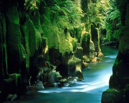 green waterfall landscape jpg 1250