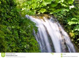 Green Waterfall Stock ImageImage: 5105891 306