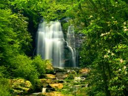 Waterfall in green forest wallpaperForWallpaper com 1296
