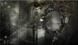 GREY FOREST PREMADE BACKGROUND by VaLeNtInE DeViAnT on DeviantArt 1140