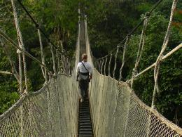 hanging bridge 661