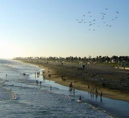 Late Afternoon At Huntington Beach California 269