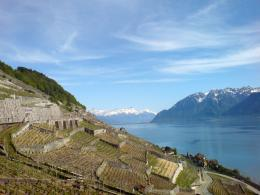Description Lake Geneva from Lavaux jpg 1008