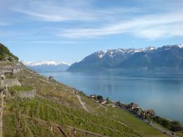 Description Lavaux and Lake Geneva jpg 1400