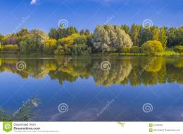 Lake In Early Autumn Stock PhotoImage: 57043335 407