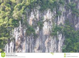 Landscape photo of Cliff face close up from thailand mountain 354