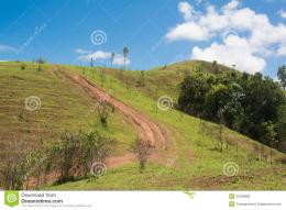 Beautiful Summer Landscape With Road In The Mountain Of Thailand 661