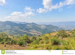 Forest with landscape mountain north of thailand 607