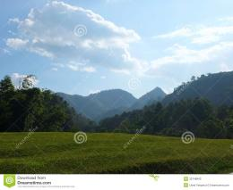 Rural landscape of northern Thailand on the background a mountain 1146