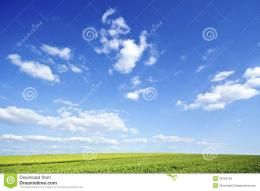 Green Field Under Big Sky Stock ImagesImage: 26129154 220