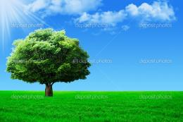 Big tree on green field — Stock Photo © Yuichiro #6391557 1372