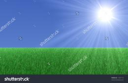 Big green field with grass an a big Sun in the sky 529