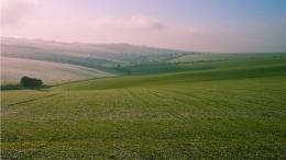 large green field 1366x768 1922