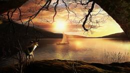 Beautiful day forest sky nature lake sun HD Wallpaper 1899
