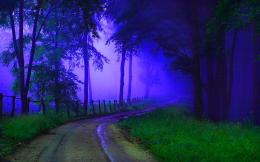 download road to the misty forest wallpaper tags forest path mist road 1373