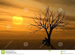 featuring a man sitting under a tree in solitude at sunset 1043