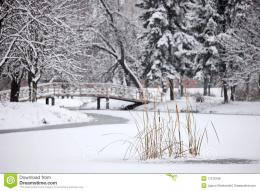Winter Scene From The City Park Royalty Free Stock ImagesImage 1852