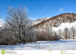 Winter On The Mountain Stock ImagesImage: 34839804 1243