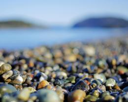 Similar wallpapers for Macro of pebbles on the beach 1957