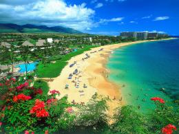 Hawaii – One of the most best vacation spot in the world | Tourist 328