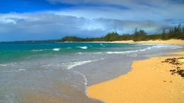 Beautiful Hawaii Beach 1113