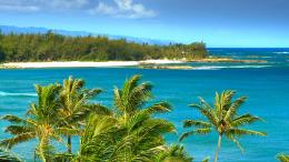 SEE The Most Beautiful Hawaii Beaches HD Blu Ray Video DVD: The #1 1156