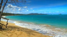 SEE The Most Beautiful Hawaii Beaches Photos from our new HD Video DVD 1891