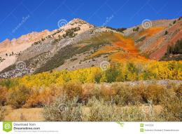 Magnificent Mountains In Vicinities The Northlake Royalty Free Stock 1182