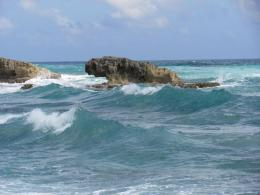 2011 Cruise to Cozumel And Progresso Slideshow & Video | TripAdvisor 399