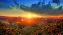 Magnificent sunrise flowers mountains HD Wallpaper 1206