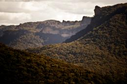 Magnificent views from the Glow Worm Walk on the Newnes PlateauPhoto 1490
