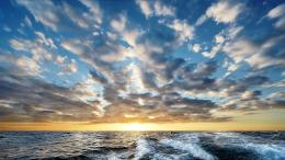 Magnificent oceanscape horizon waves wake wallpaper 1252
