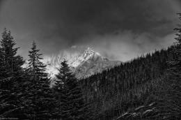Cascades Cloudy Day BW 875